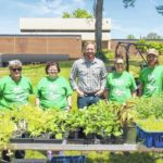 Horticulture Club gains experience, serves community
