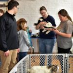 Easter Bunny, live animals highlight event